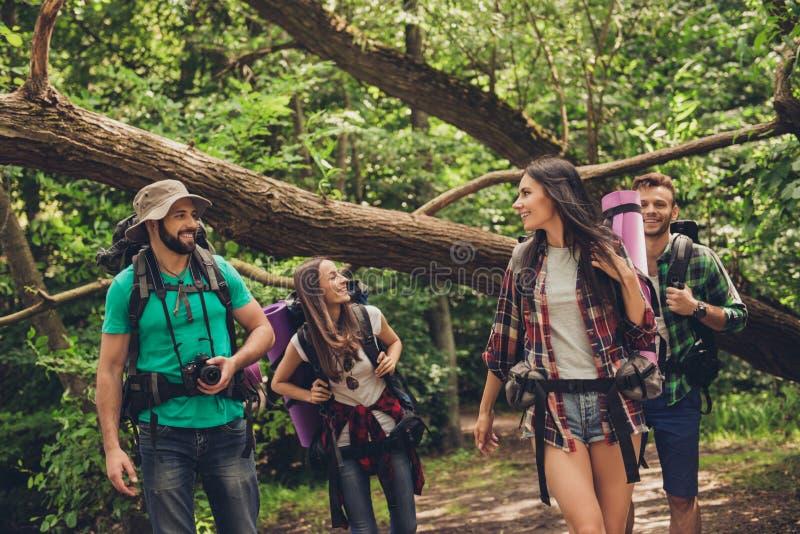 享受自然的秀丽四个朋友照片的低角度关闭,远足在狂放的森林里,寻找阵营的一个好的地方, 免版税库存图片