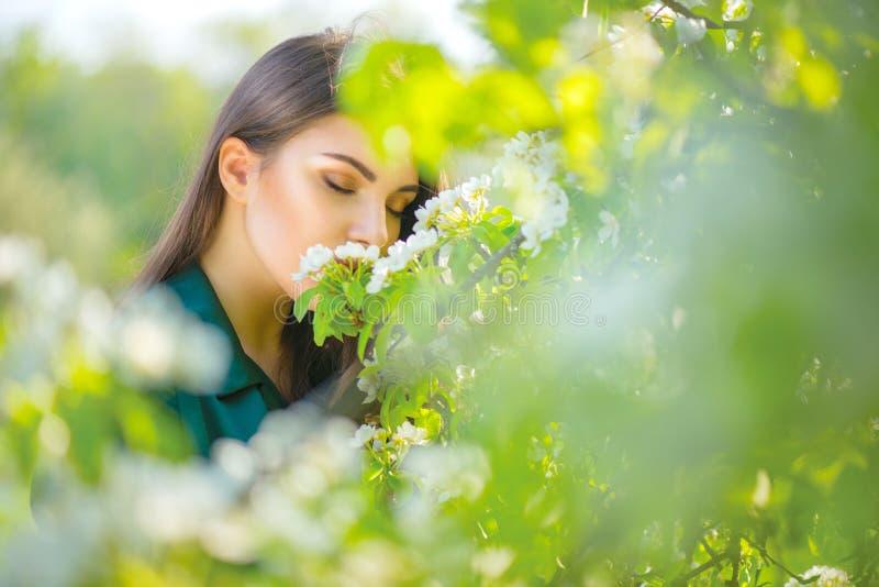 享受自然的秀丽少妇在春天苹果树,愉快的美丽的女孩在有开花的果树的一个庭院里 图库摄影