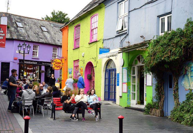 享受阳光在五颜六色的爱尔兰 库存图片