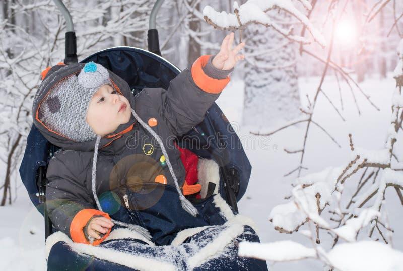 享受雪橇乘驾的小男孩 库存图片