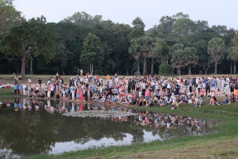 享受风景的游人巨大的人群  在池塘附近的游人在热带 免版税库存图片