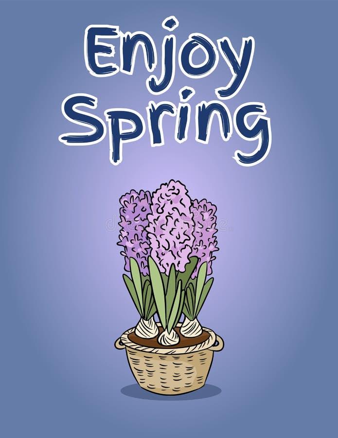 享用与风信花花的春天明信片 传染媒介手拉的逗人喜爱的例证 库存例证