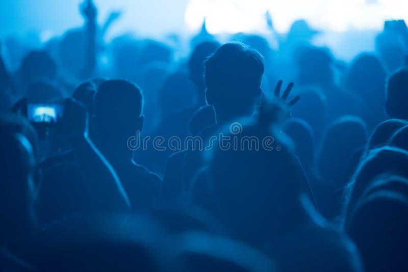 享用人的音乐会 免版税库存图片