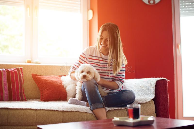 享用在客厅的女孩和狗 免版税图库摄影