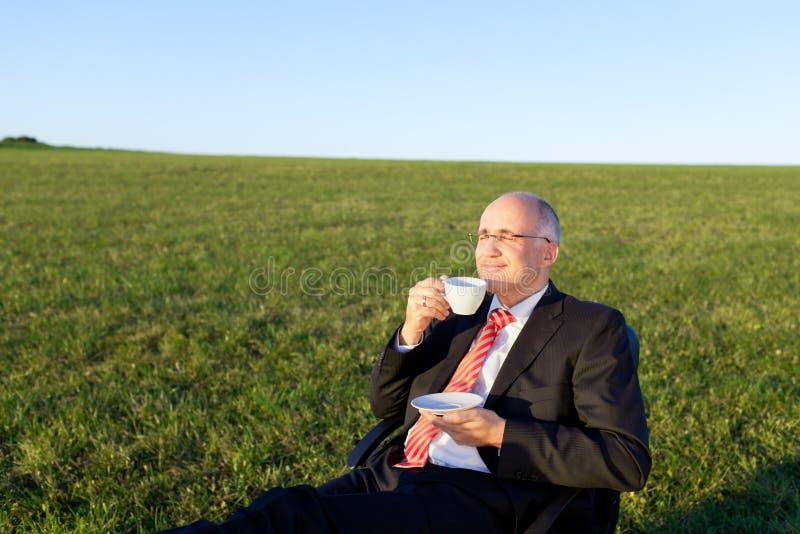 享用在椅子的商人咖啡在象草的领域 库存照片