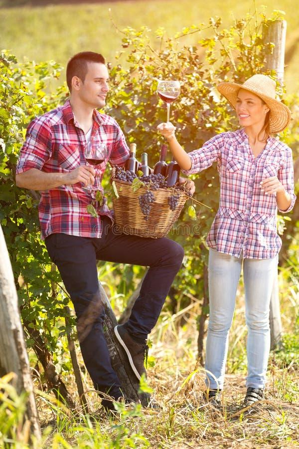 享用在酒的夫妇,收获 免版税库存照片