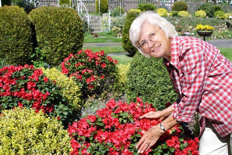 享用她的庭院的高级妇女 免版税库存照片