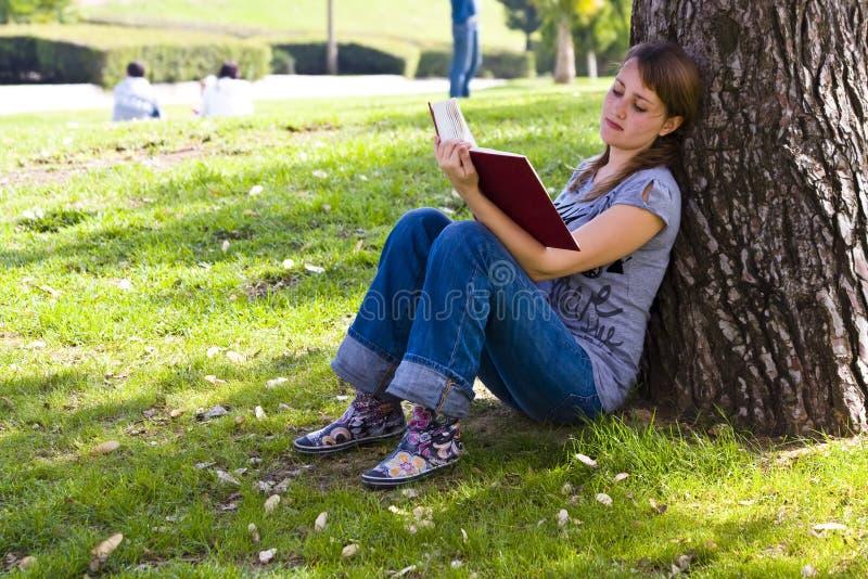 享用年轻人的书 库存照片