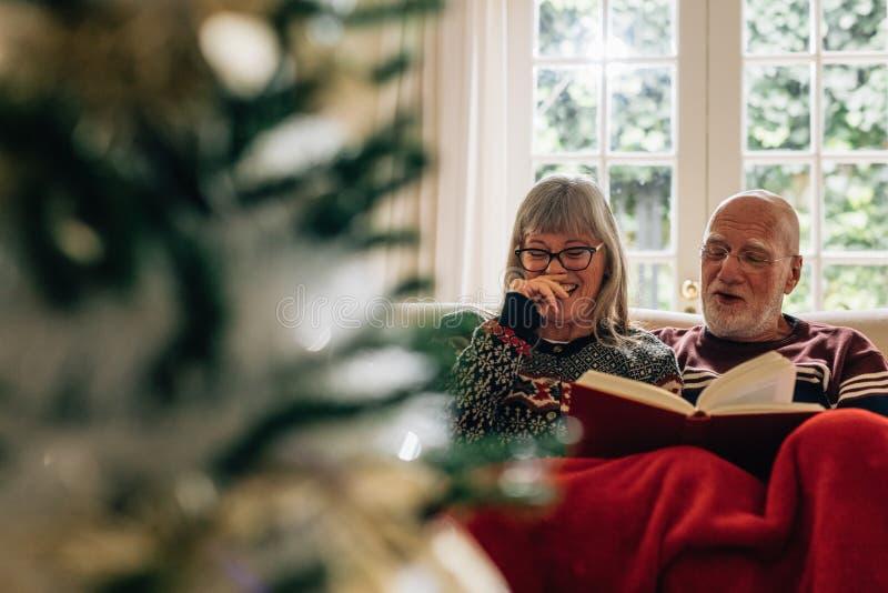 享用愉快的老的夫妇一起读书 库存照片