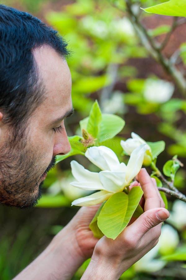 享用春天白色木兰花的开花年轻人 库存照片