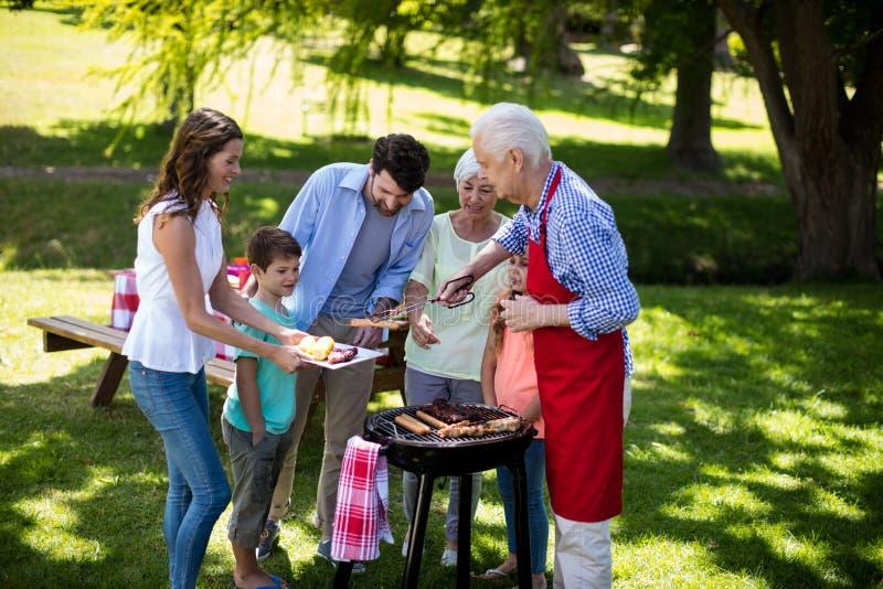 享用烤肉的多一代家庭在公园 库存照片