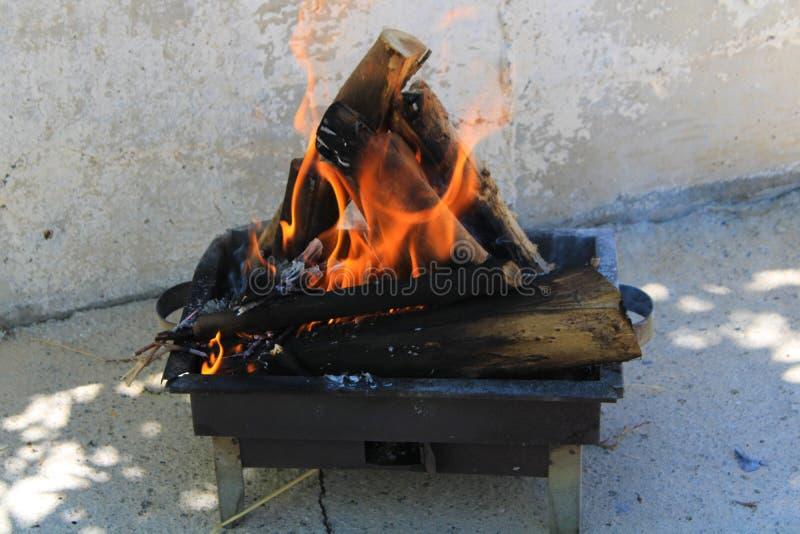享用烤肉的木柴的燃烧的片刻在野餐 库存照片
