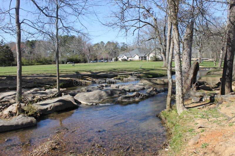 享用的河和晴天在公园 库存照片