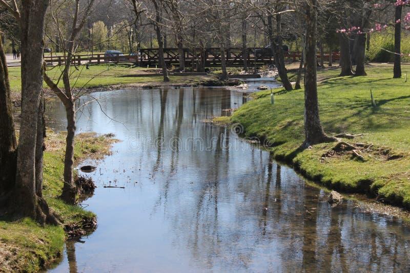 享用的河和美好的晴天在公园 免版税库存图片