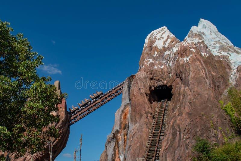 享用远征珠穆琅玛过山车的激动的人民在动物界中在华特・迪士尼世界33 库存图片