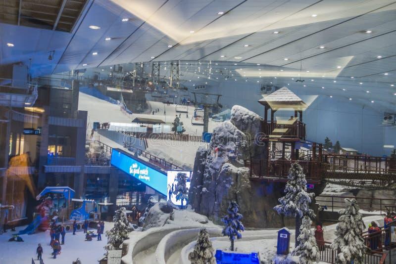 享用雪在沙漠在滑雪迪拜 免版税库存图片