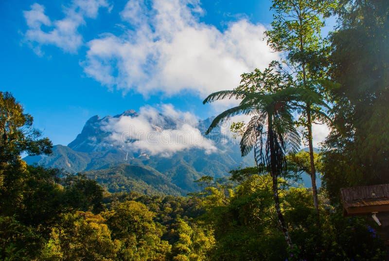 京那巴鲁山国家公园,沙巴婆罗洲,马来西亚 免版税库存图片
