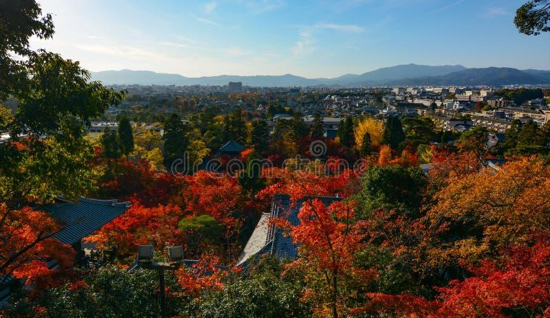 京都市地平线的美好的晚上秋天视图在有红槭和寺庙屋顶的日本 库存照片