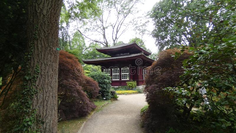 京都日本 免版税库存照片