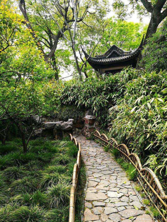 亭子和绿叶在古老中国庭院里 免版税库存照片