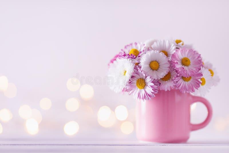 亮光背景下,粉色杯中的美丽英式雏菊花 贺卡模板 库存图片