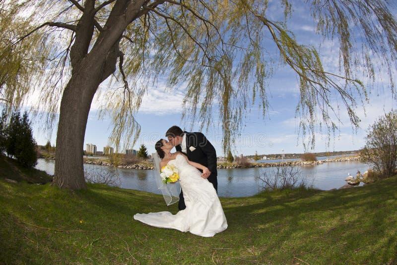 亲吻他们的婚礼年轻人的夫妇日 免版税库存图片
