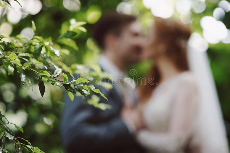 亲吻在公园的婚姻的样式抽象被弄脏的背景新娘和新郎 免版税库存照片