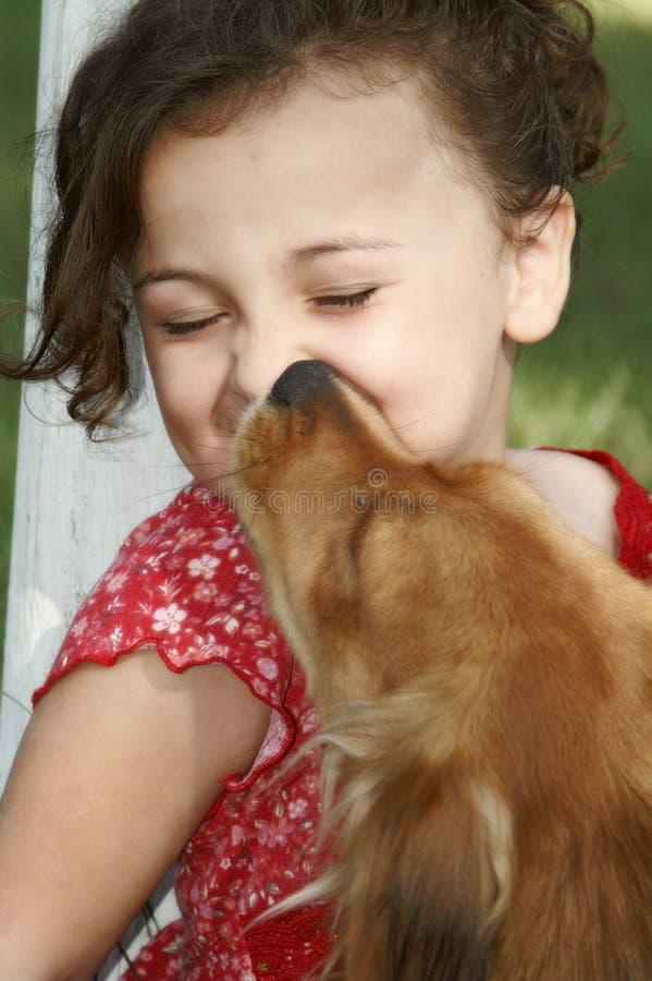 亲吻小狗 库存照片