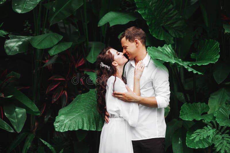 亲吻愉快的夫妇,当放松在室外温泉游泳场时 库存照片
