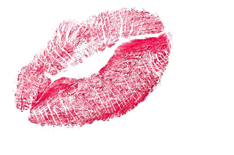 亲吻 向量例证
