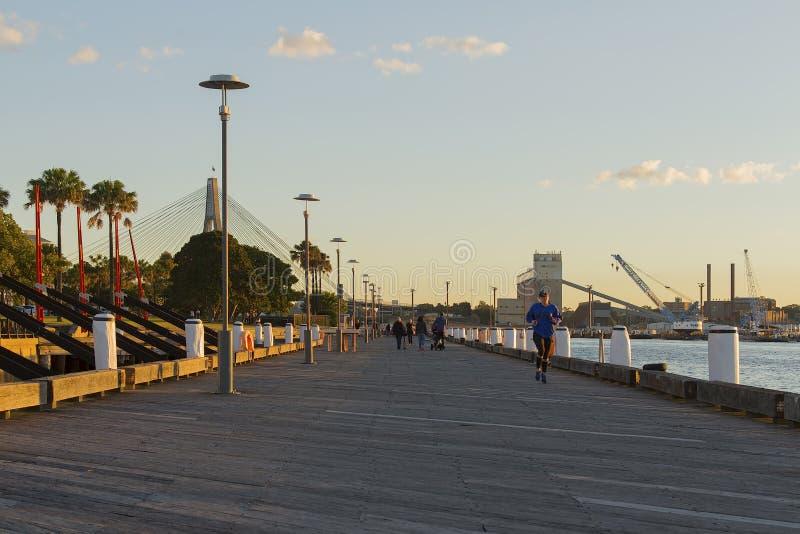 亲爱的海岛的步行者在悉尼停放码头和Anza 免版税图库摄影