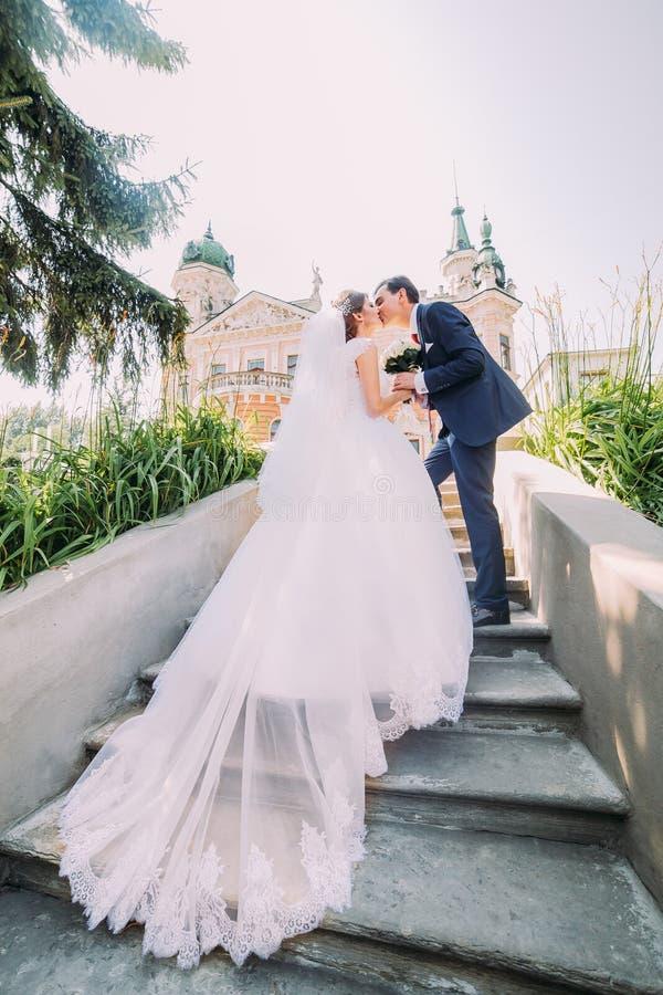 亲吻在台阶的典雅的时髦的年轻婚礼夫妇画象在公园 背景的浪漫古色古香的宫殿 免版税库存照片