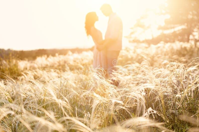 亲吻在日落,在前景的焦点的爱恋的夫妇 图库摄影
