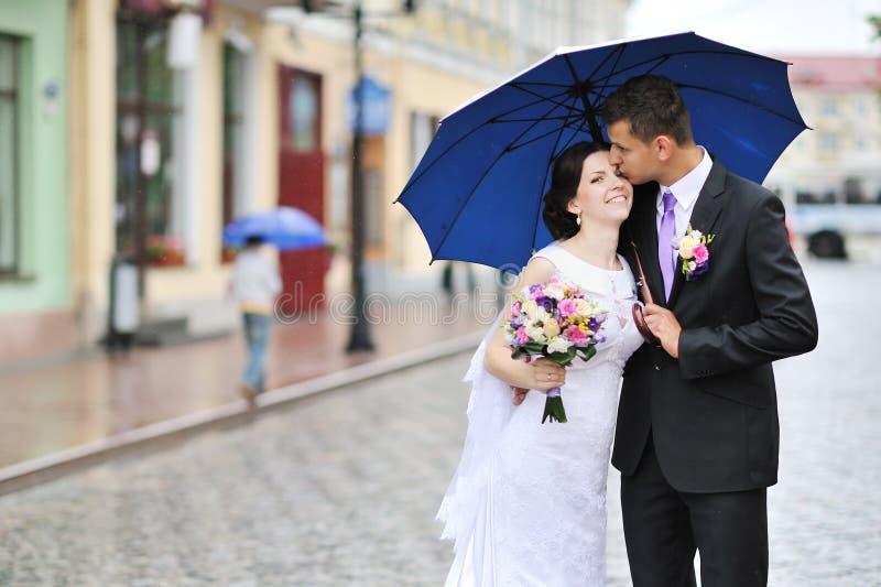 亲吻婚礼夫妇 图库摄影