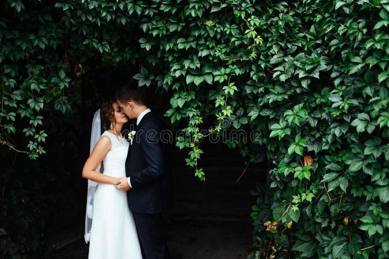 亲吻美好的年轻婚礼的夫妇,有flowe的白肤金发的新娘 图库摄影