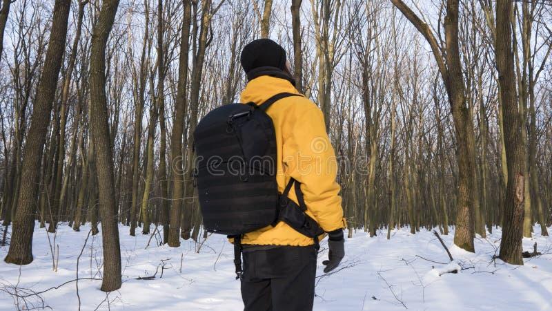 人一个救生服的和有一个黑照片背包的在用雪盖的晴朗的森林里看在树 库存照片