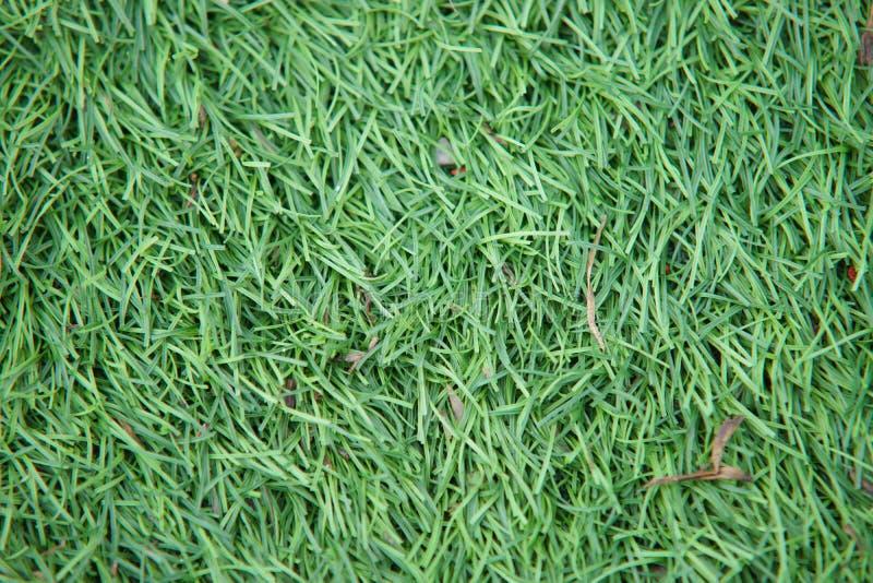 人为田径运动与绿草与人为草结合了 库存图片