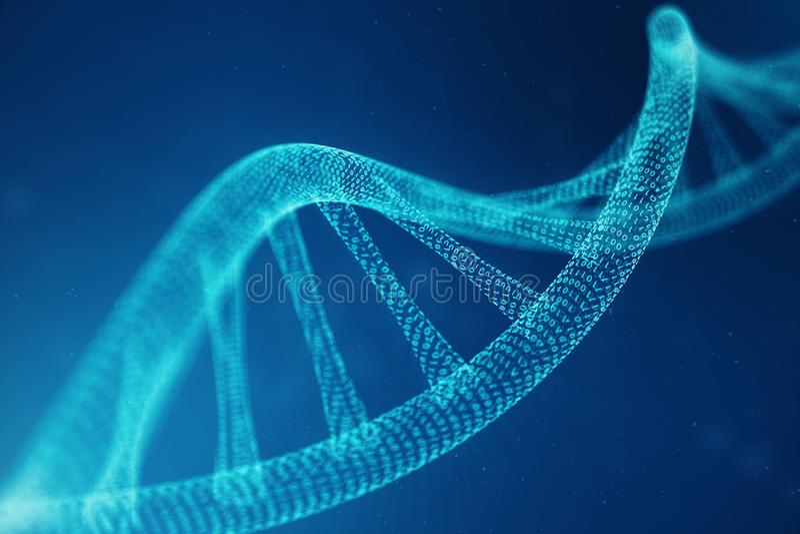 人为intelegence脱氧核糖核酸分子 脱氧核糖核酸被转换成二进制编码 概念二进制编码染色体 抽象技术 免版税库存照片