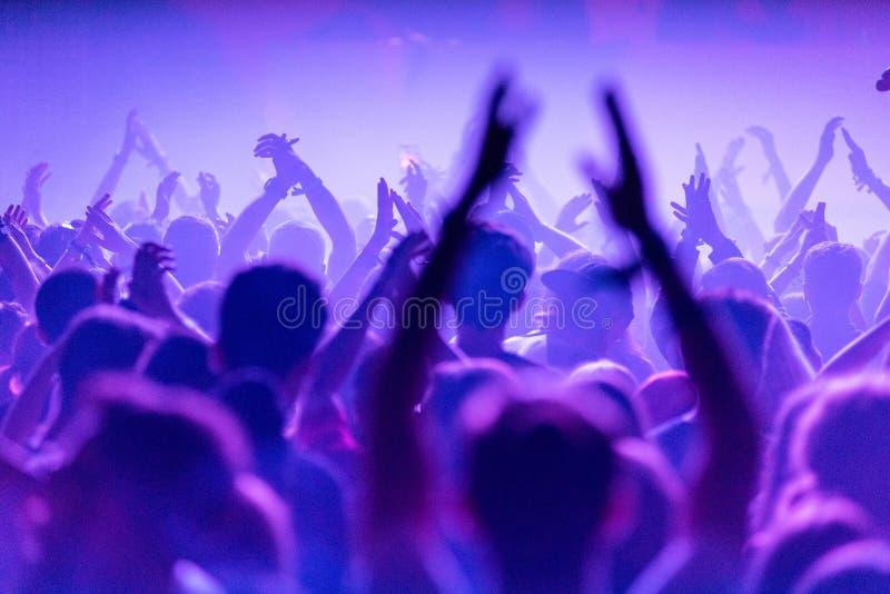 人人群生活音乐会的 免版税库存图片