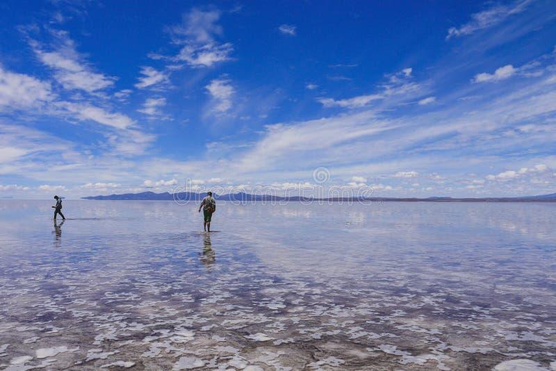 人们在乌尤尼盐沼现出轮廓 库存照片