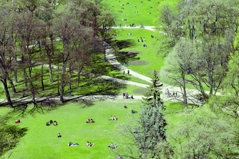 人们在绿色草坪的公园给 顶视图 库存照片