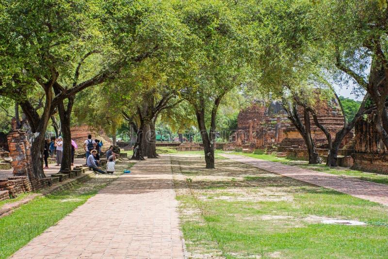 人们旅行在古庙在泰国的阿尤特拉利夫雷斯历史公园 库存照片