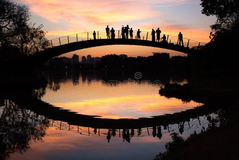 人们由湖,伊比拉布埃拉公园,圣保罗,巴西观看五颜六色的日落 免版税图库摄影