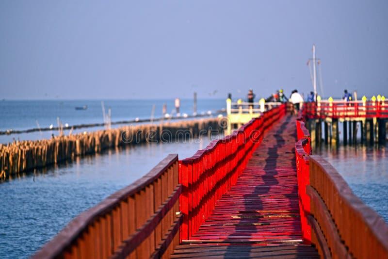 人们走向观看的海豚在木红色桥梁, Th海湾  免版税库存图片