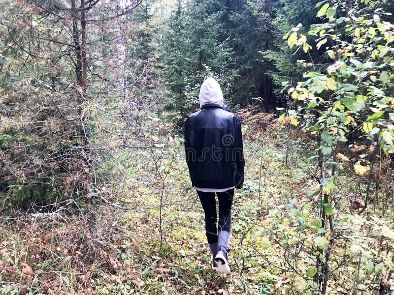 人们,在温暖的衣裳的蘑菇捡取器在远足走通过有树的秋天森林在沿草的自然 免版税库存图片