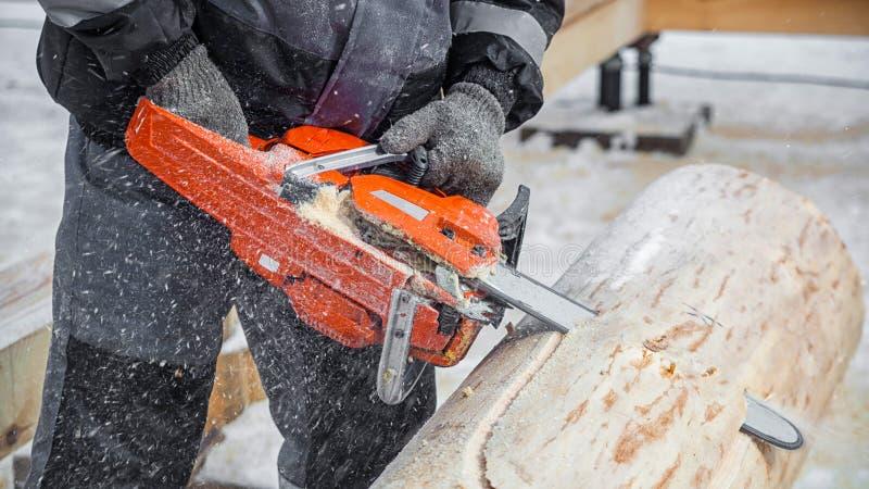 人伐木工人工作 免版税库存图片