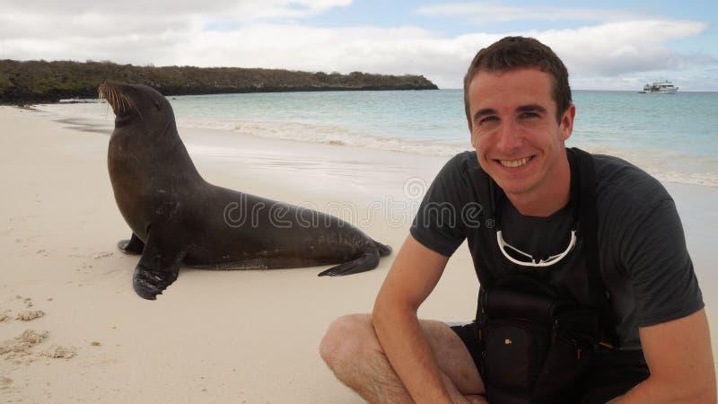 人会议在海滩的海狮 库存照片