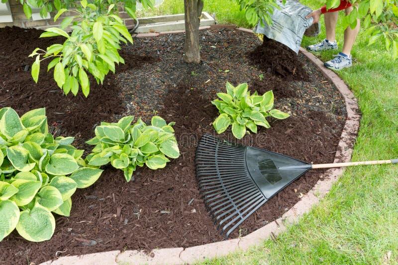 人传播的腐土在庭院里 图库摄影