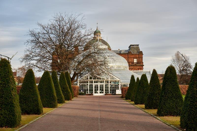 人位于普遍的格拉斯哥的` s宫殿绿园担当冬景花园、咖啡馆和博物馆 免版税库存照片