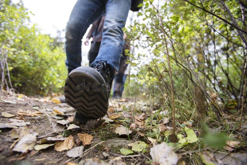 人佩带的鞋子,当远足在森林足迹时 库存图片